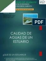 CALIDAD DE AGUAS DE UN ESTUARIO.pdf