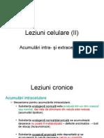 04 Leziuni Celulare II