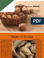 Presentation Patato