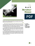 STRUKTUR HEWAN.pdf