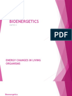 Bioenergetics by Lyn