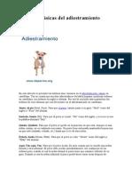Ordenes Clásicas Del Adiestramiento Canino