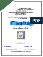 Rapport L3E Homi (LAMTI) - Copie