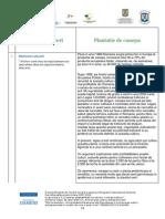 Plantatie de canepa.pdf