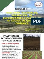 Ppt-Labores Culturales Previsión Plagas y Enfermed QUINUA Sta Ursula