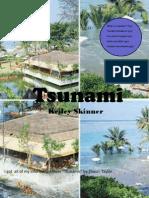 Natural Disaster Magazine