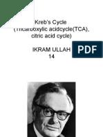 Kreb's Cycle.ppt