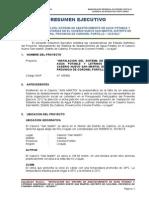 Resumen Ejecutivo - Caserio Nuevo San Martin