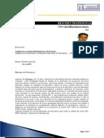 CV Plantilla PHISOGI-JhonFigueroa