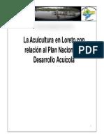 17 Avances realizados en el marco de la implementación del PNDA (Loreto).pdf