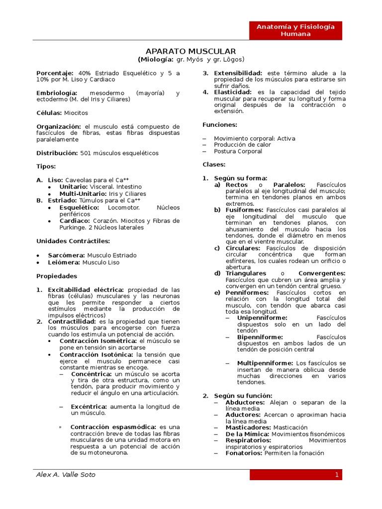 Hermosa Anatomía En Línea Y La Clase Fisiología Regalo - Anatomía de ...
