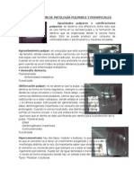 Interpretacion radiografica de Patologias