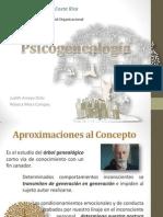 Psicogenealogía. presentacion