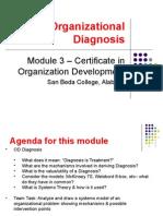 COD Module 3 - Organizational Diagnosis