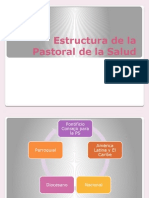 Estructura de La Pastoral de La Salud