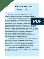 Hepatita Virala A,B,C,D,E