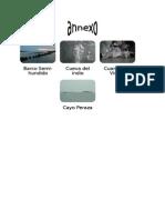 annexo informe 2