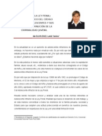 Leidi Yanina Oliva Diaz-Infracción a La Ley Penal