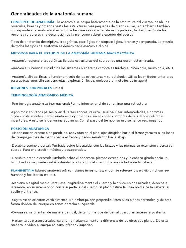 Dorable Anatomía Regional Frente A La Anatomía Sistémica Bandera ...