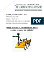 Mapa Mental (Características de Un Equipo y Grupo de Trabajo)