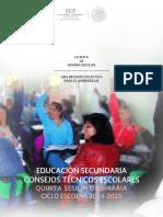 quinta_Secundaria.pdf