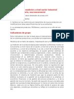 Problema de La Medición a Nivel Sector Industrial