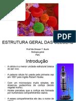 Estrutura Geral Das Células