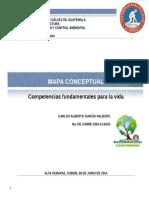 Competencias Para La Vida Mapa Conceptual Carlos Valiente