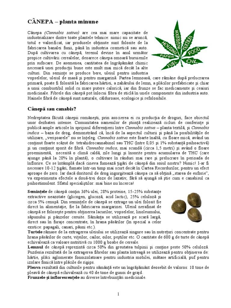 marijuana prevede pierderea în greutate