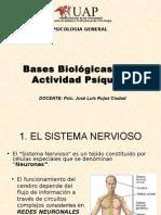 SEMANA 2 Bases Biologicas_91597