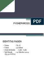 Pyonephrosis