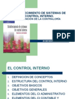 Establecimiento de Sistemas de Control Interno (1)