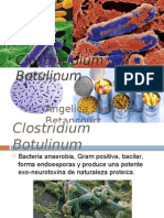 Clostritridium botulinum & perfringens