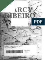 Darcy Ribeiro - Encontro de Escritores Mineiros