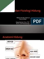 anatomihidung