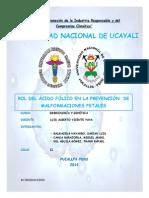Acido Folico (Recuperado) (2)