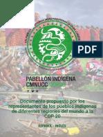 Documento Propuesto Pueblos Indigenas