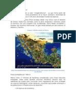 Biodiversidad en Hidalgo resumen