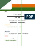 CONCULTA E-BUSSINESS 1.docx