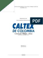 sistema de gestion de seguridad y salud en el trabajo caltex de colombias