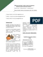 informe final de la validacion (1).docx