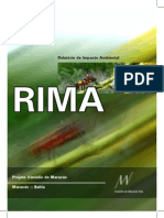 RIMA_VANADIO.pdf