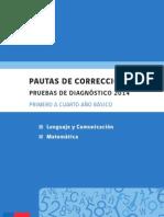 Pauta de Correccion Diagnostico 2014