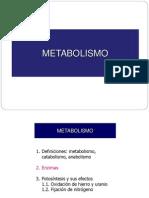 02. Metabolismo - Enzimas