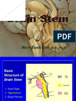 Brainstem .ppt