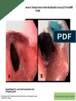 Gastroenterol. Rep. Gastro.got015, Figure 1