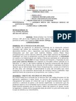 Sentencia de vista sobre Mejor Derecho a La Posesion, Propiedad y Reivindicacion - Confirmaron F - Mozo - Parcona