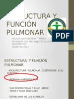 Estructura y Función Pulmonar Final