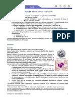 Istologia 33 - Globuli Bianchi - Granulociti