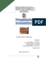 59575615 Diagnostico Comunitario 130728213742 Phpapp01